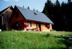 Ferienhaus Forstauer`s Teichalm